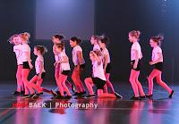 Han Balk Voorster Dansdag 2016-3015.jpg