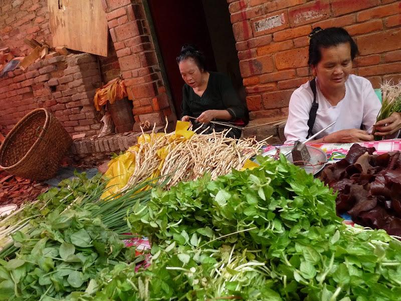 Chine .Yunnan . Lac au sud de Kunming ,Jinghong xishangbanna,+ grand jardin botanique, de Chine +j - Picture1%2B504.jpg