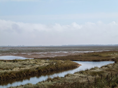 North Coates Marshes