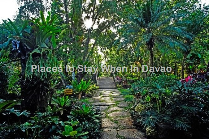 Hotels In Davao City