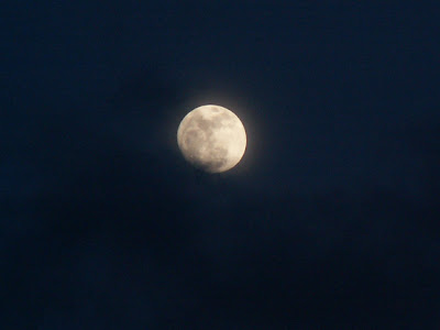 full moon March 2011 nature photograph