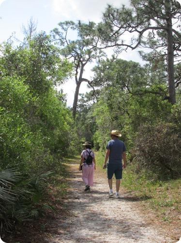 Ais Trail - Scenes (3)
