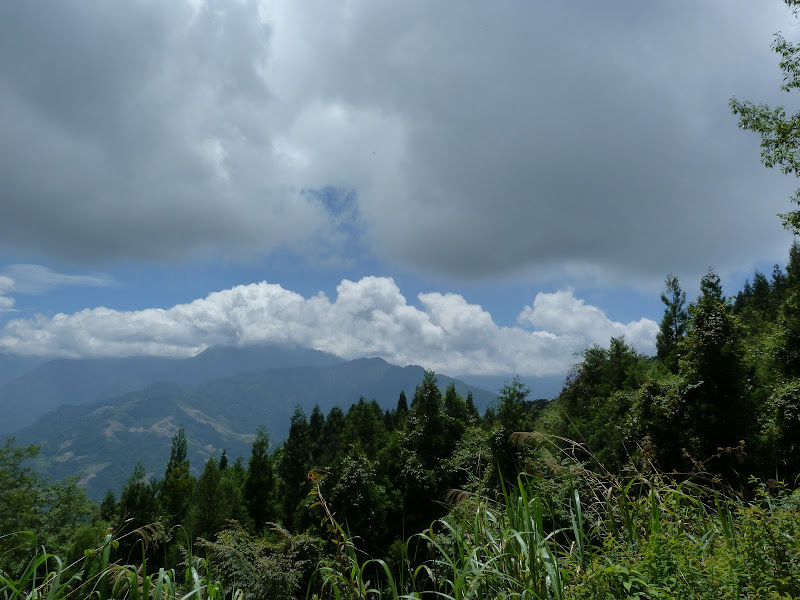 TAIWAN Dans la region de Wushe,au centre - P1140142.JPG