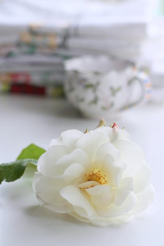 Vintage Keepsakes White Rose