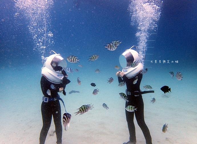 24 沖繩自由行 水上活動 香蕉船 Marine Support TIDE 殘波 藍洞海洋觀光 藍洞浮潛&珊瑚礁 餵食熱帶魚浮潛