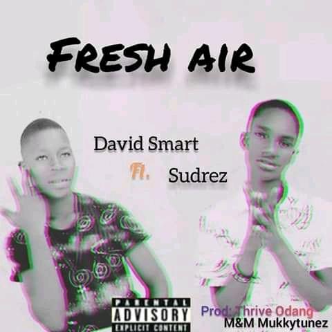 MUSIC : David smart ft Sudrez Fresh Air