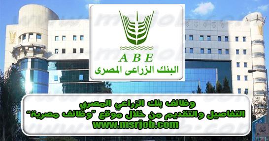 اعلان وظائف البنك الزراعي المصري للمؤهلات العليا .. مسابقة 2021