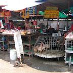 Kip uitzoeken op de markt