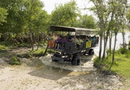 swamp_buggy