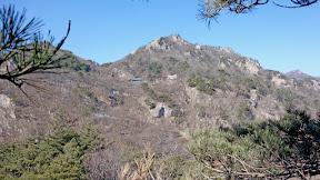 청계산 (두루봉:877m) : 경북 상주