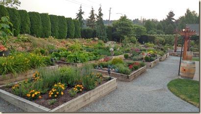 7-29 Herb Farm 1
