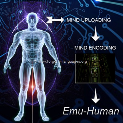 Mind uploading and enconding in an emulated human