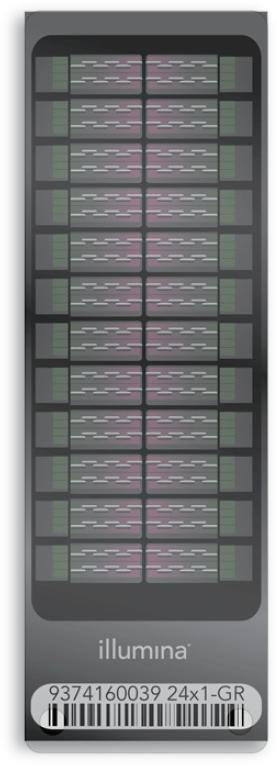 The Illumina Infinium OmniExpress-24 v1 .2 BeadChip
