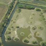Aerial Shots Of Anderson Creek Hunting Preserve - tnIMG_0393.jpg