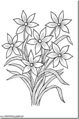 flores masdibujos  (8)