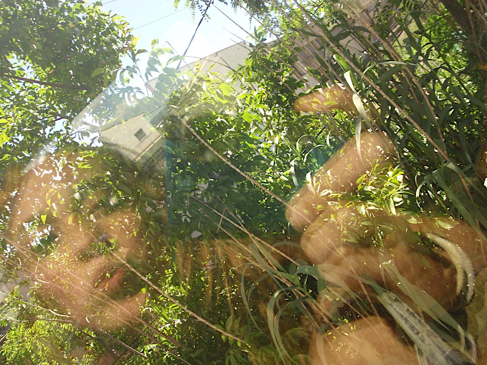 Sortida Cloenda dAgrupament a Planoles 2010 - P6200572.JPG