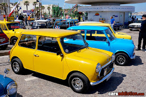 Yellow and Blue Mini