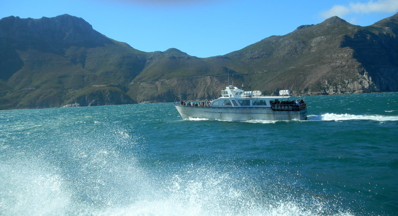 Cruising Hout Bay