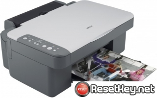 Epson DX3800 Waste Ink Pads Counter Reset Key