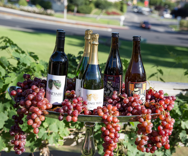 photo of wine bottles on a platter decorated with fresh grapes