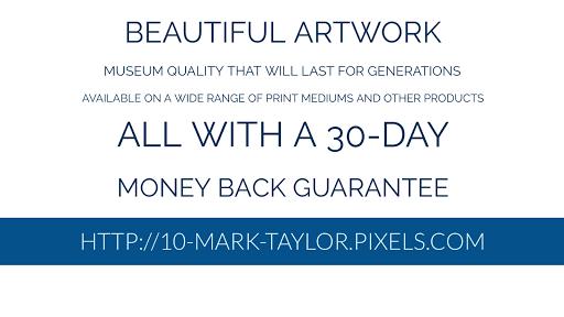 Mark Taylor artist Pixels