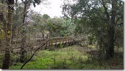 Bridge-8