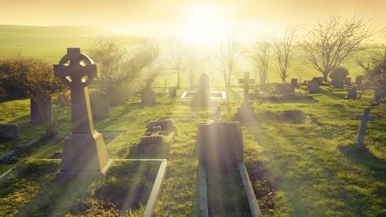 Sự sống đời sau – ViKiNi