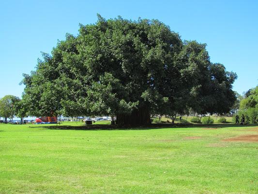 Ala Moana State Regional Park, Honolulu, HI 96814, United States