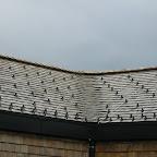 Holzschindeldächer von Holzbau Stiegler in Haus