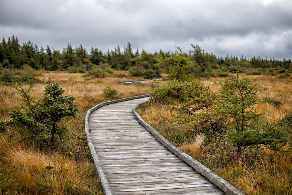 Cabot Trail, Park Narodowy Cape Breton Highlands, Nowa Szkocja, Kanada