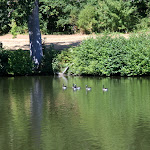 Abbaye des Vaux de Cernay : étang