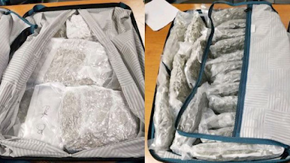 7 suitcases containing 174 pounds of pot seized at Atlanta airport