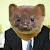 Business Weasel