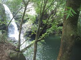 Nice falls and pool on the Pipiwai Trail.