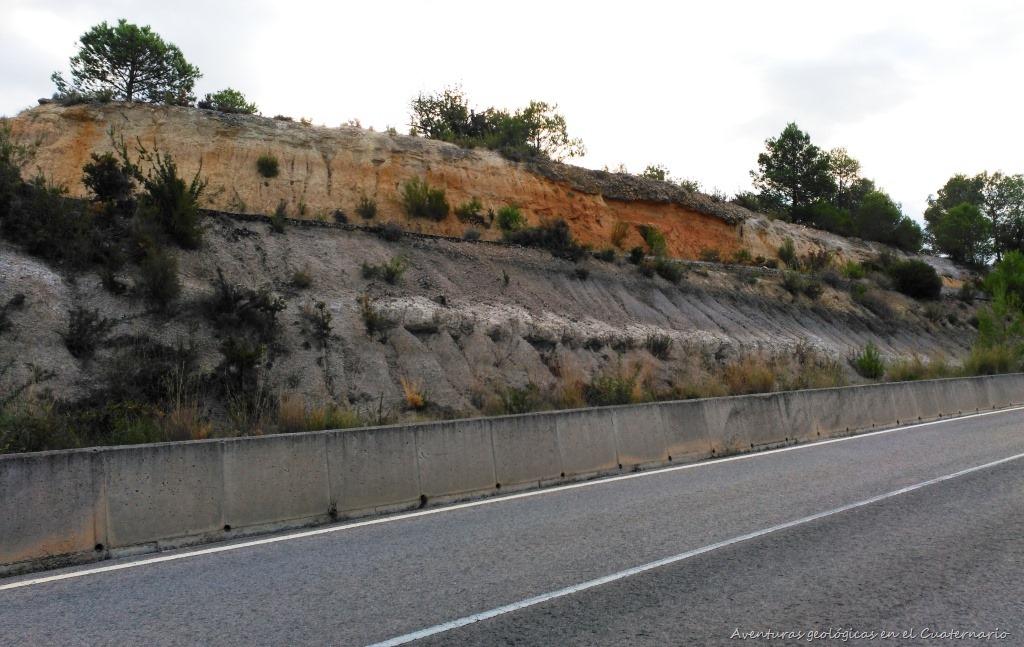 [Secci%C3%B3n+Mioceno+Murta%5B9%5D]