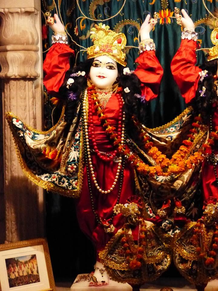 ISKCON New Govardhan Deity Darshan 12 Mar 2016 (18)