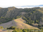 Along Rocky Ridge View Trail