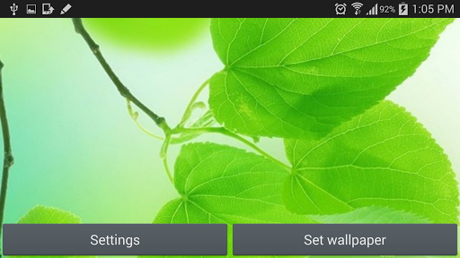Leaf Live Wallpaper Green
