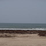 Surfside 2011 - 100_9483.JPG