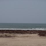 Surfside 2011 - 100_9483.JPG