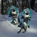 雪のネイチャーツアー スノーシューハイク A・Bコース
