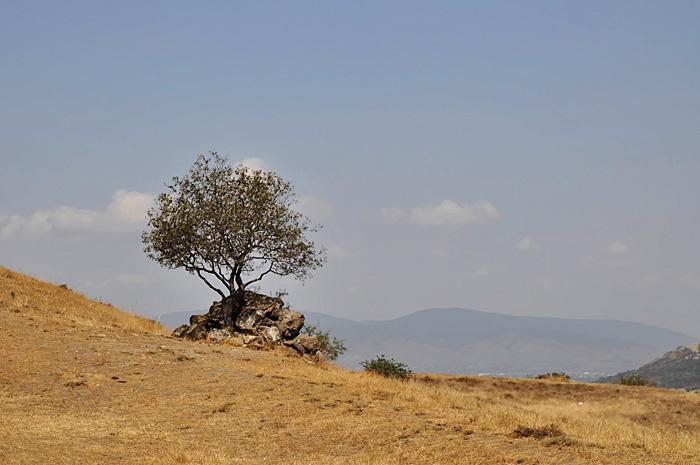 Mtskheta13.jpg