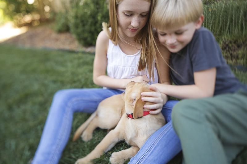 orange county family lifestyle photography-15