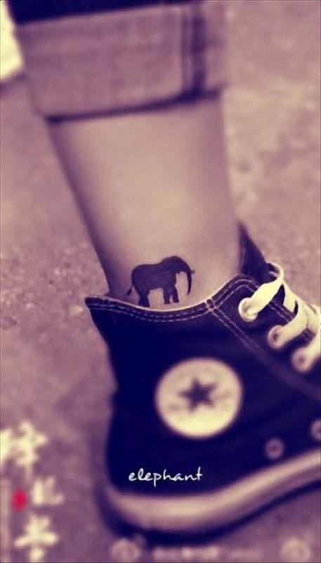elefante_tatuagens_39