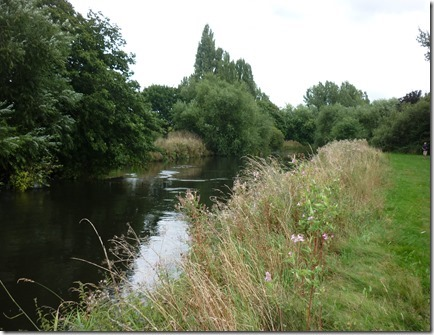 9 river tame at  tamworth_thumb[1]