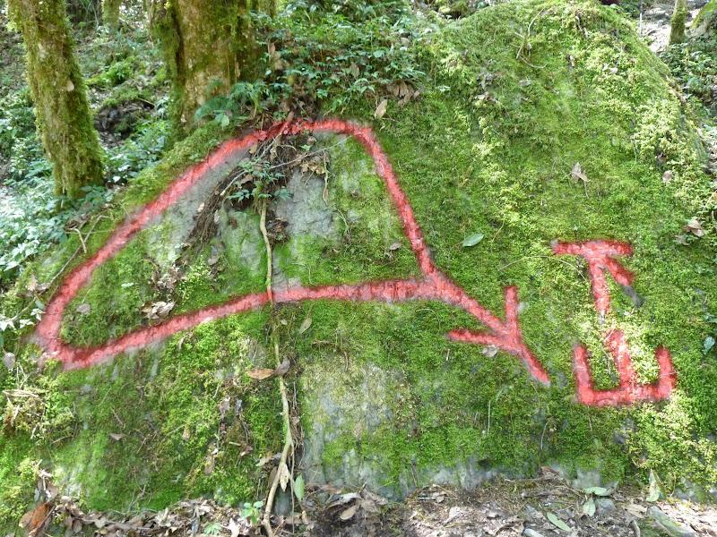 TAIWAN. Dans une region ou habitent les aborigenes de l ethnie Atayal - P1110768.JPG
