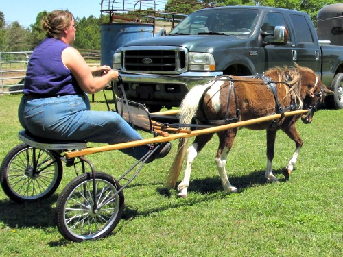 how to build a miniature pony cart