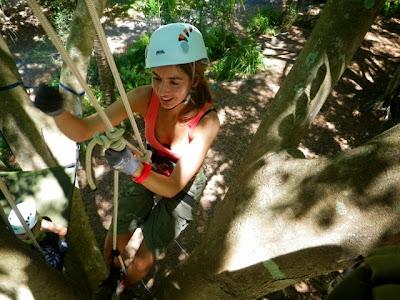sofia in australia tree climbing brisbane