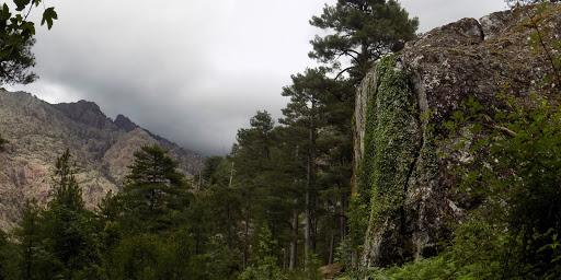 Les environs de la bergerie de Saltare