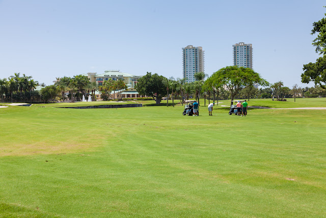 2015 Golf Tournament - 2015%2BLAAIA%2BConvention-1640.jpg